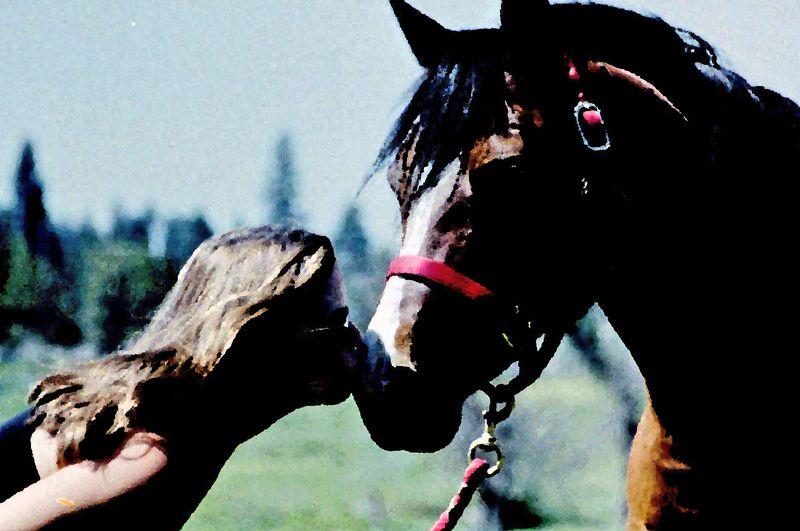 Janna.horse.kiss