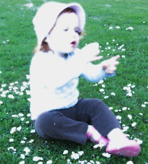 Khloegazeflower