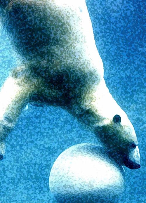 Polarbearball