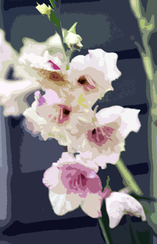 Pink flower.home