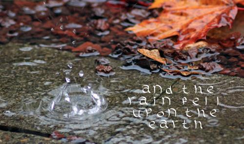 Raindropleaf