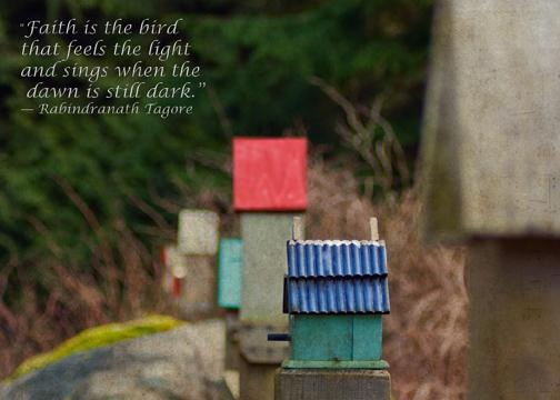 Birdhousespoulsbo72_11 01 17