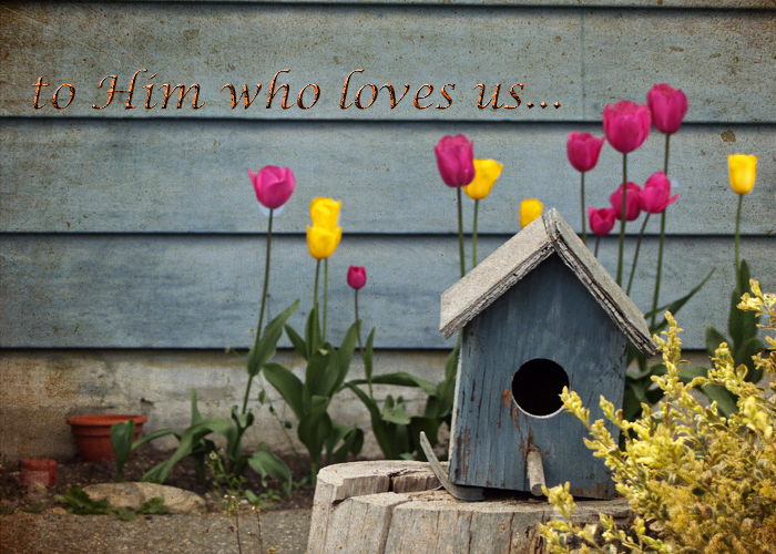 Tulipbirdhouse