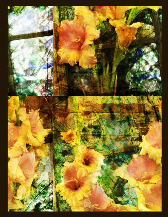 Flowerlillywindow