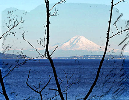 Mt.rainiersound_edited-1