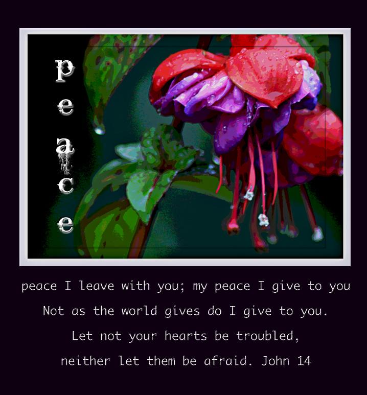 John 14 peace