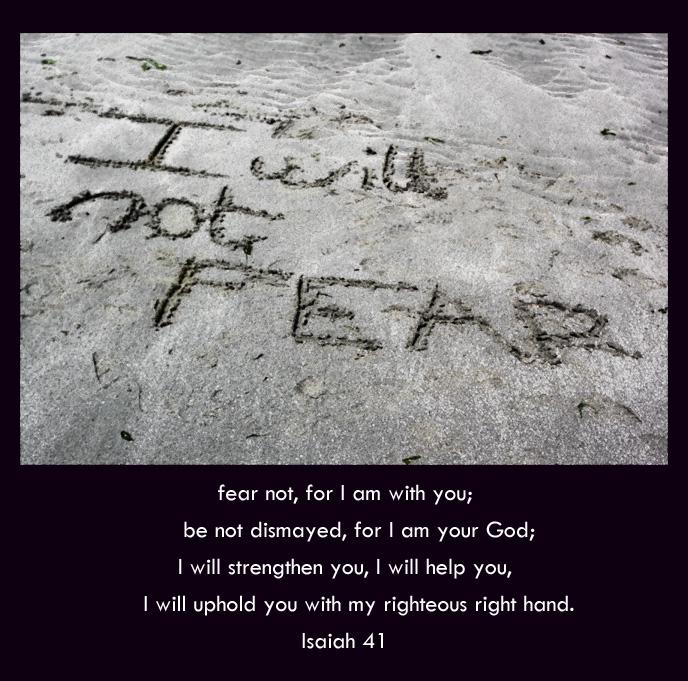 Isaiah 41