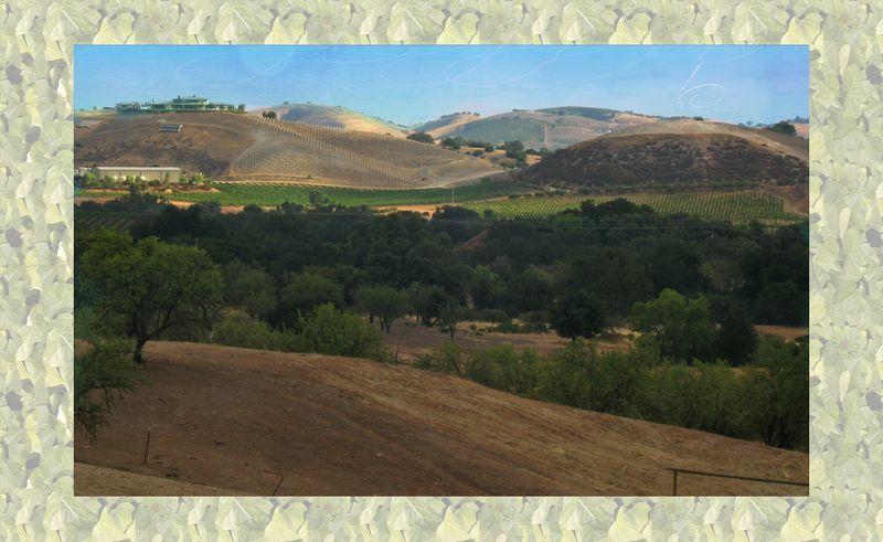 Exline Morning Hills