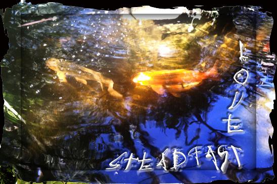 SteadfastLove