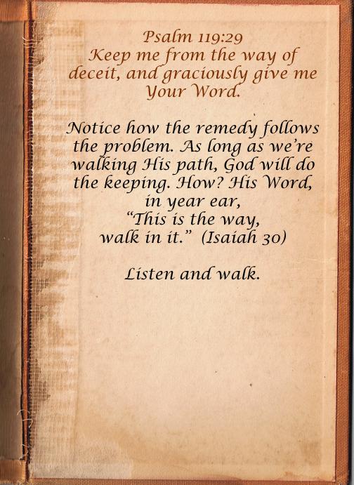 Verse 29 text