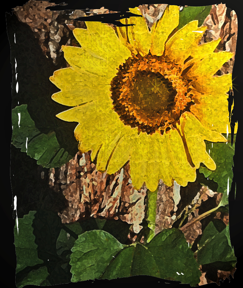 Sunflowerpv