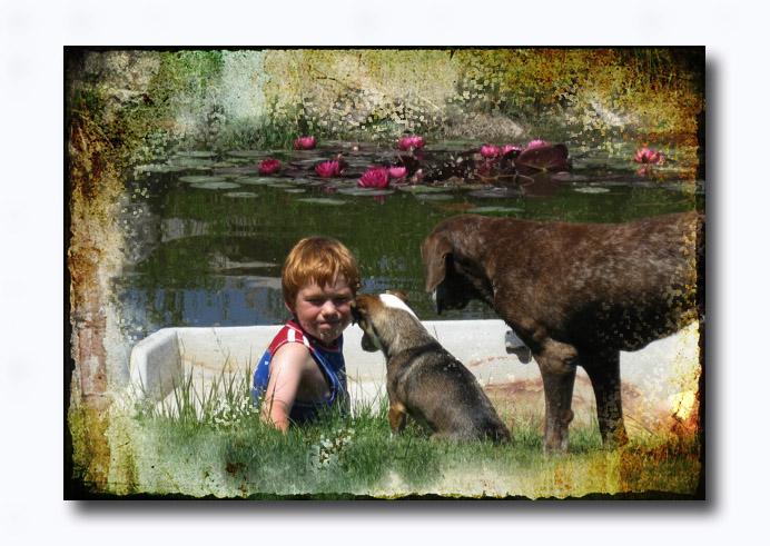 Verse 10 boysdogsboatpond