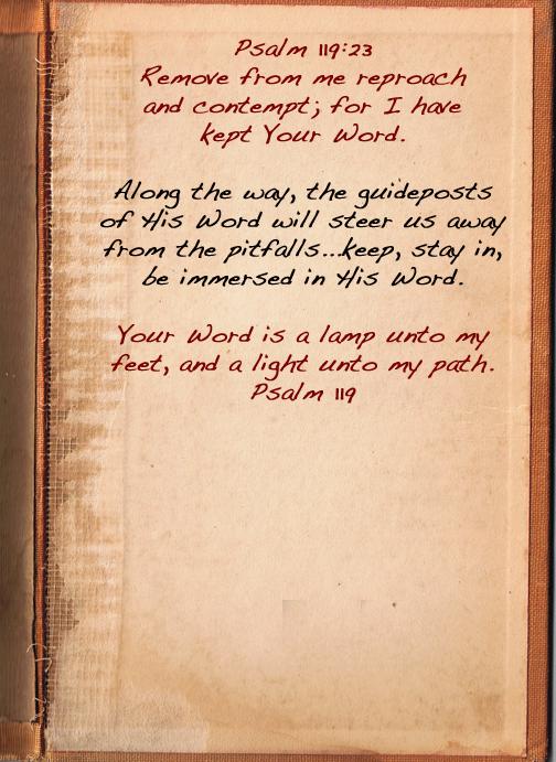 Verse 23 text