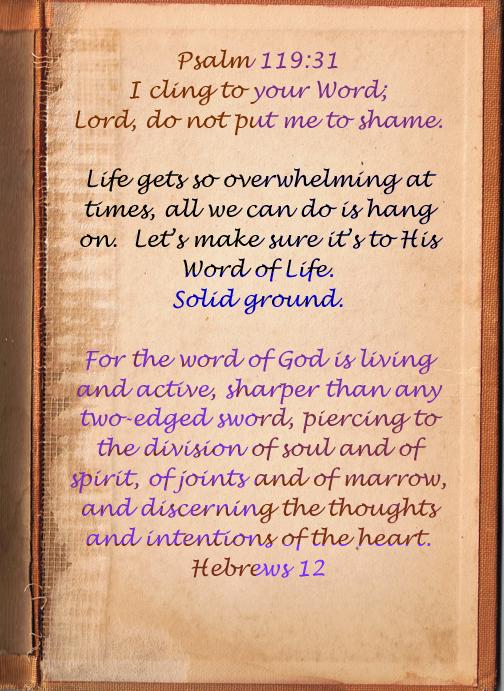 Verse 31  text