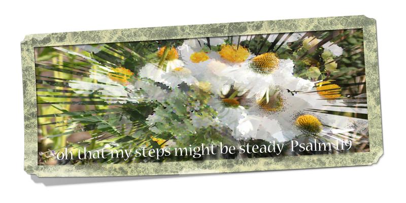 Steady steps