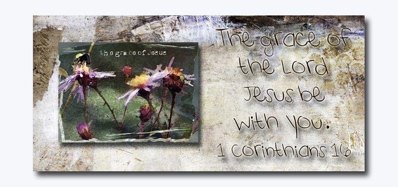 Grace of jesus 2014