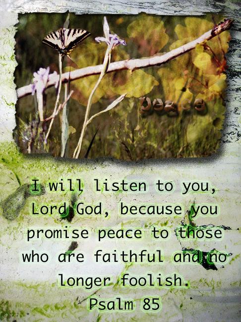 Peace faithfulness
