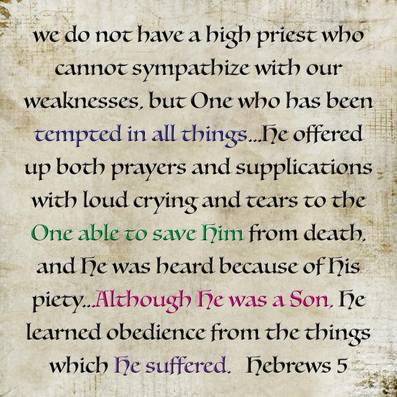 Hebrews 5 correct