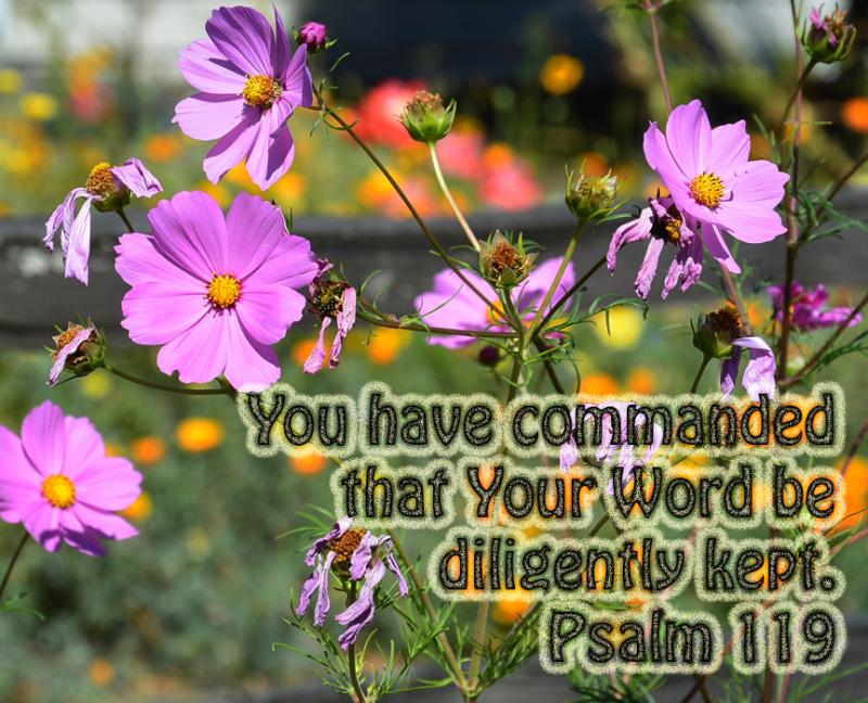 Diligently kept