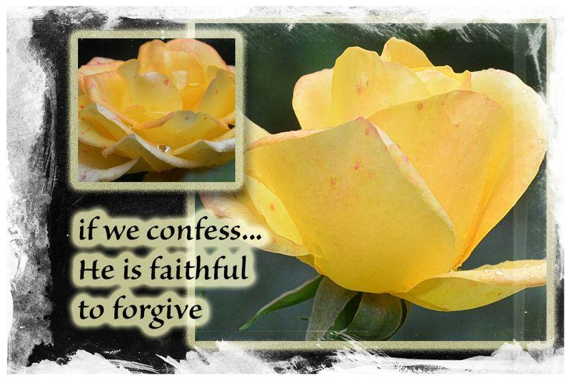 Confess forgive
