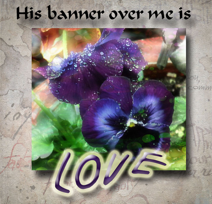 Banner is love