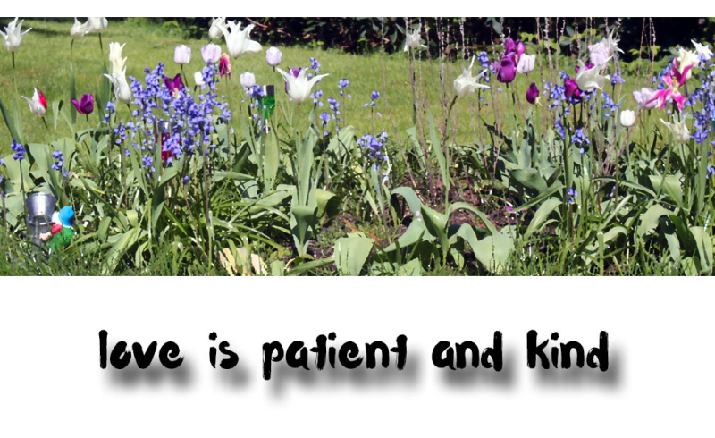 Patientkindlove
