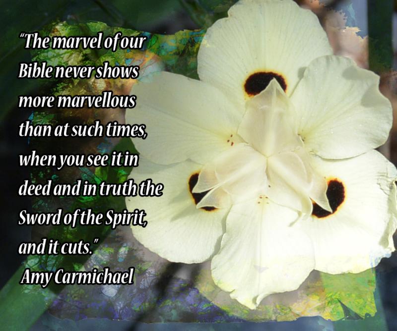 Marvelous Word