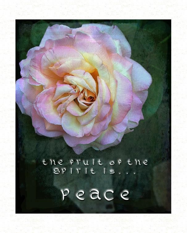 Peace8 2015
