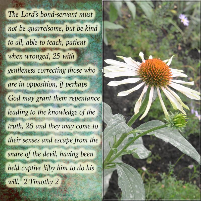 The Lord's bondservant