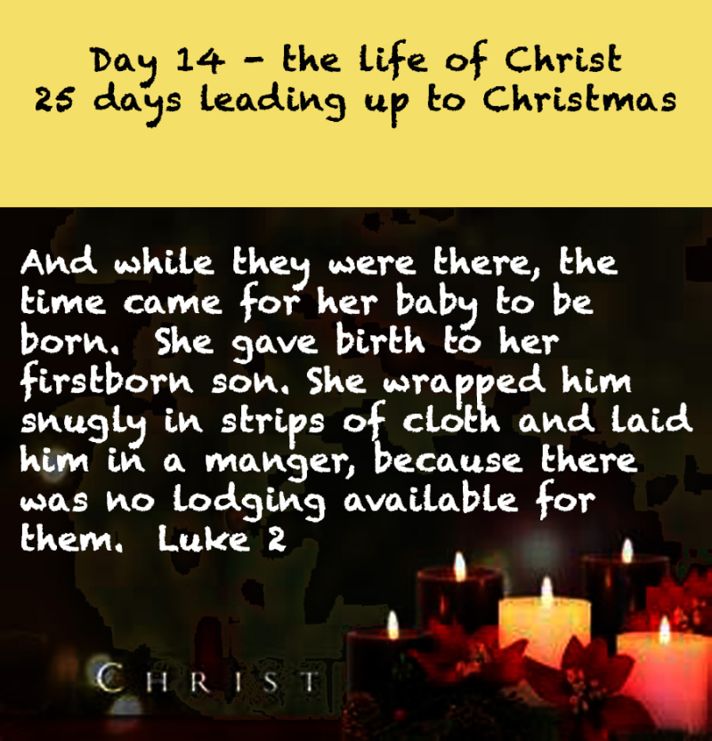 Day 14 life of Christ