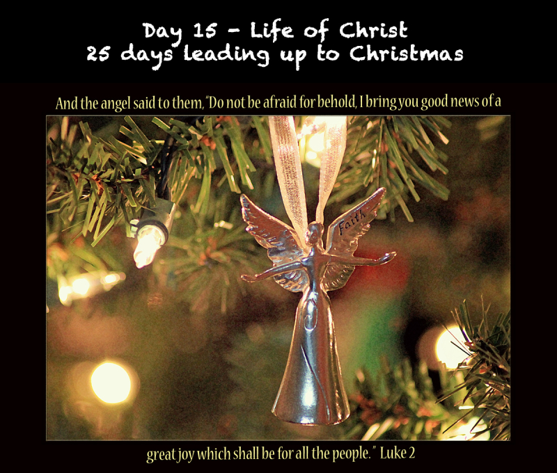 Day 15 Life of Christ