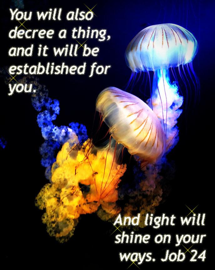 Lightwillshine