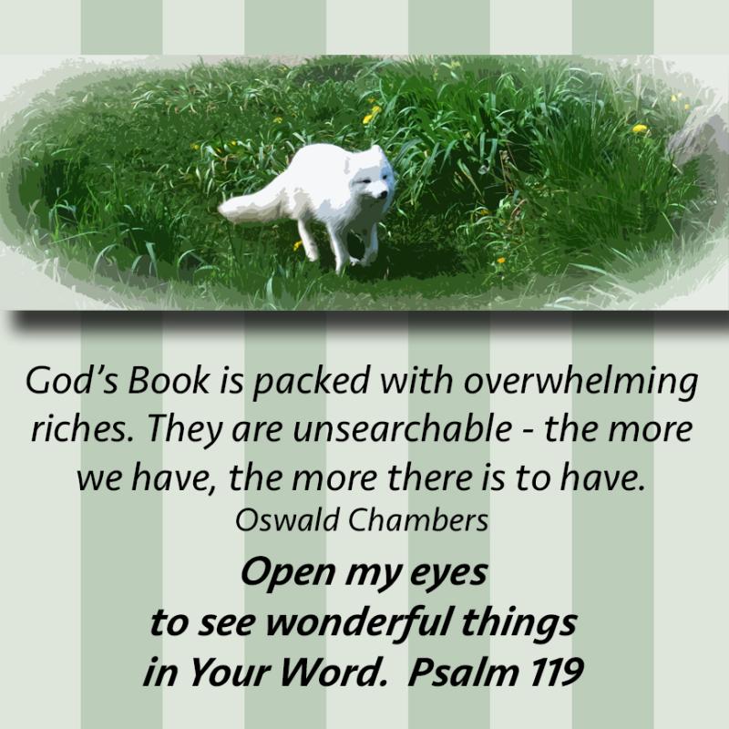 God's Book